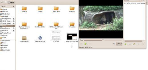 Video .mov - tapir