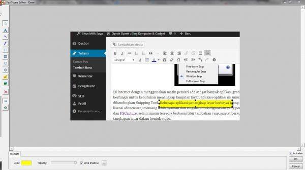 Aplikasi penangkap layar FSCapture 5.3 - Editor gambar dengan fitur Highlight