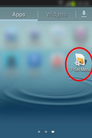 Registrasi kartu seluler Telkomsel - Aplikasi SIM Toolkit (T-Sel Menu).
